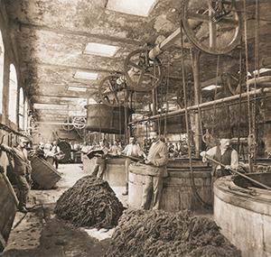 Dziedzictwo balsan pracownicy dawna fabryka chateauroux