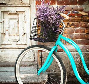 Inspiracja sztuka dekoracyjna kwiaty rower niebieski